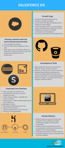 Salesforce DX thinqloud